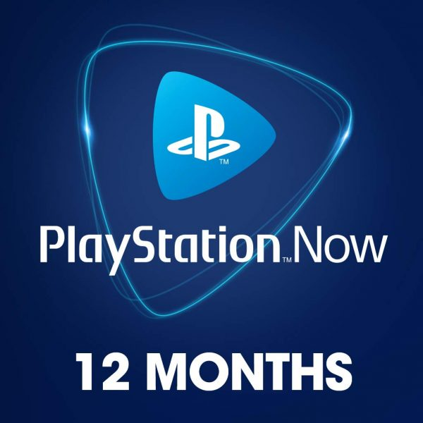 Playstation Now 12 Meses