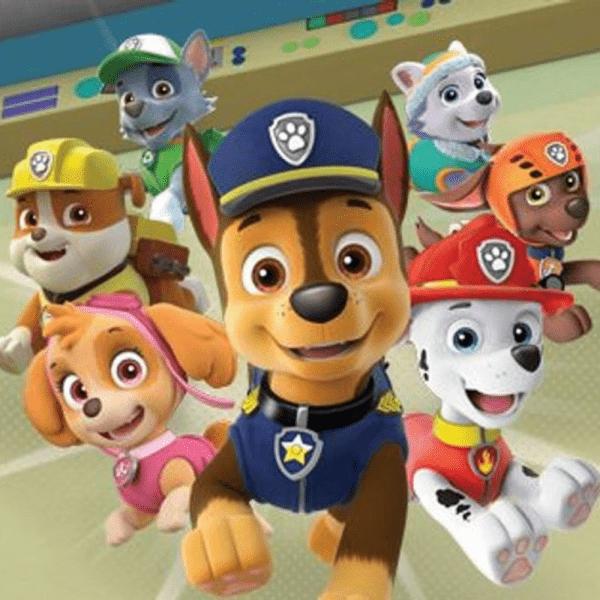 Paw Patrol salva bahía aventura Juegos Playstation4